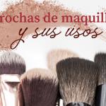 Brochas de maquillaje y sus usos